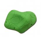 Macro 01 - Turtle